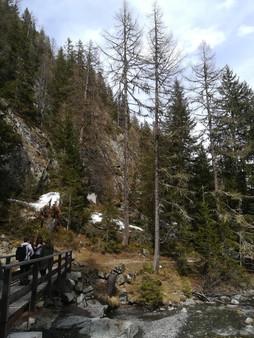 Chemin de Montagne, Vallon de Bérard.