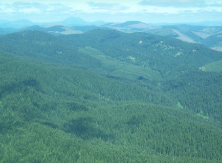 Making Stakeholders Aware of the Importance of Regional Habitat Connectivity in the Chehalis Basin