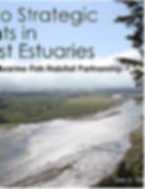 Pathways to Strategic Estuaries.PNG