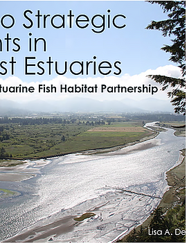 Pathways to Strategic Estuaries.PNG