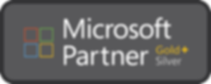 Microsoft-Partner_Logo-300x119.png