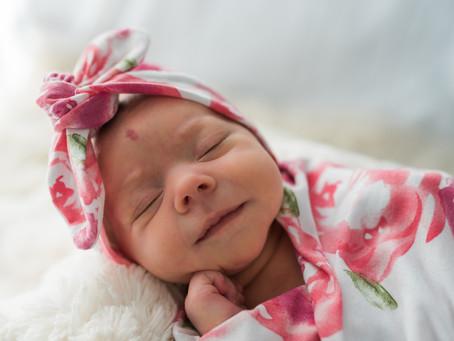 Frankie- Newborn