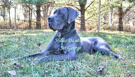 George 14 months 2.jpg
