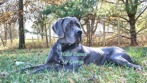 George 14 months 3.jpg