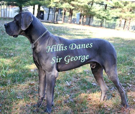 George 14 months 5.jpg