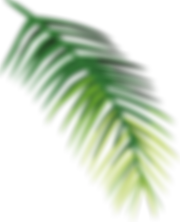 Tropical%20Leaf%20%20%20_edited.png