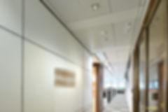 DSC_8619_blur.01.jpg