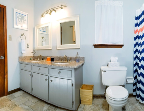 Blue Bird Bathroom