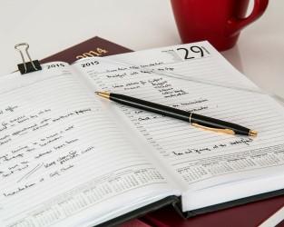 Diary 313.jpg