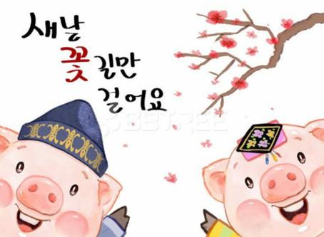 ✨ Сегодня, 5 февраля, мы отмечаем год Свиньи по Восточному кадендарю 🐷