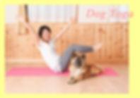 home-yoga.jpg