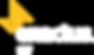 White Enactus SAIT 2020 - Elliz.png
