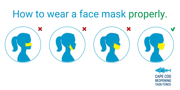 face mask (2).png
