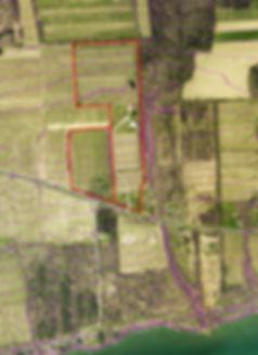 The vineyard distance to Seneca Lake, facing East