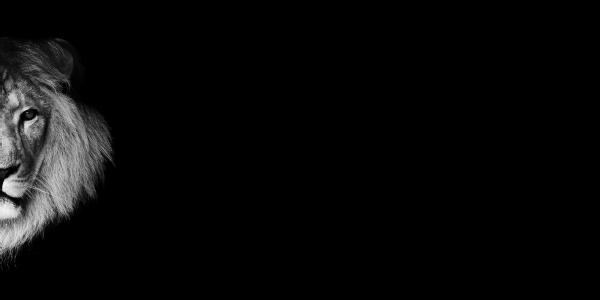WC-92300