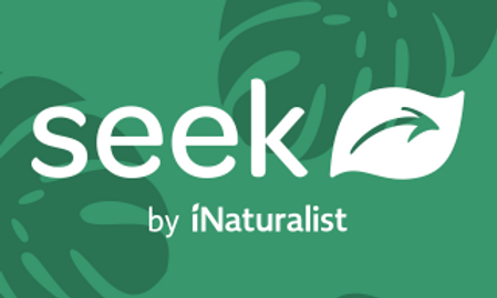 Application Seek de iNaturalist