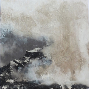 Hahnen im Nebel