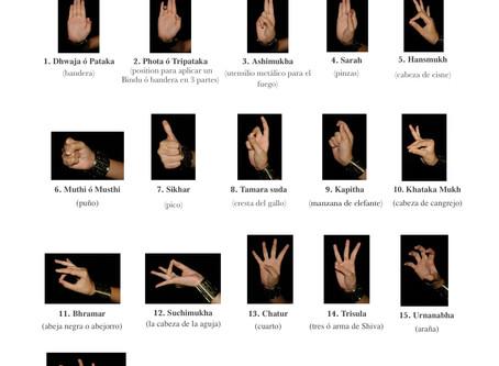 List of the Hasta or Mūdra in Sattriya dance