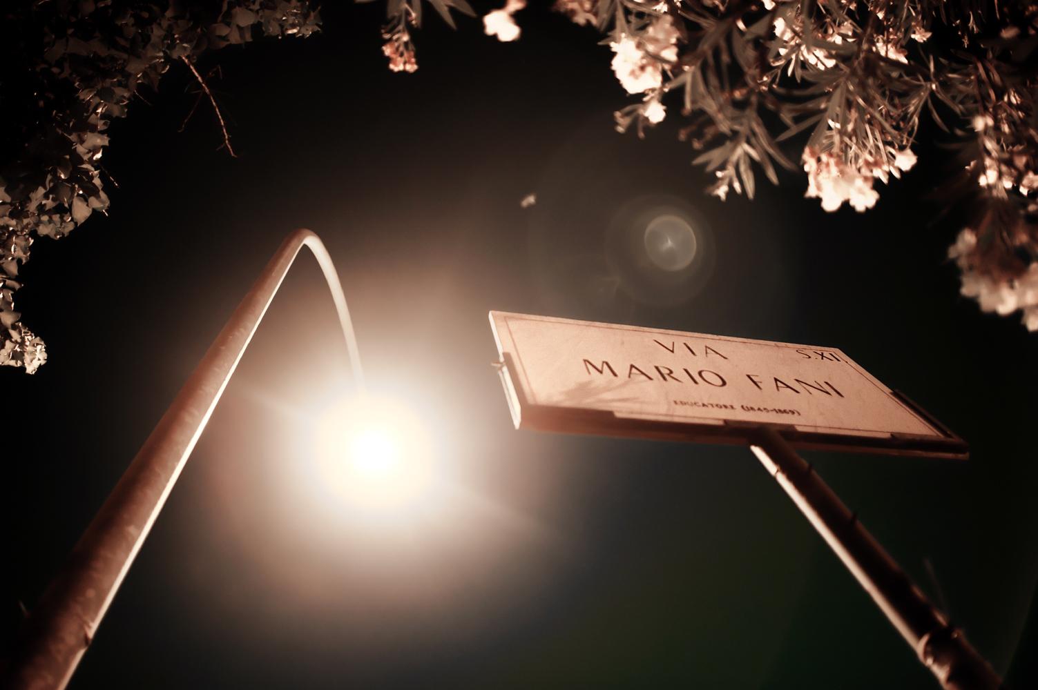 Via Mario Fani 2011