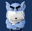 tcc troll with mask2.png