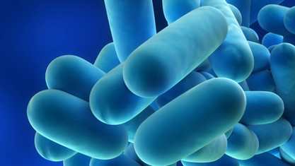 Curso de Mantenimiento de las instalaciones de riesgo frente a la Legionella para  Cepsa