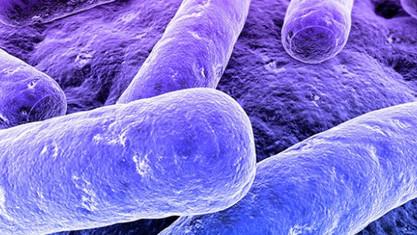 Formación sobre control y protección de Legionela para Cepsa