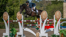 Success for Clint Beresford and Emmaville Jitterbug