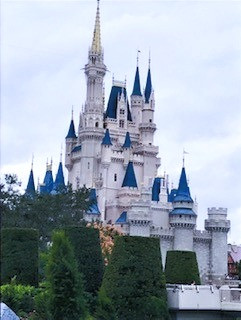 Walt Disney World (FL)