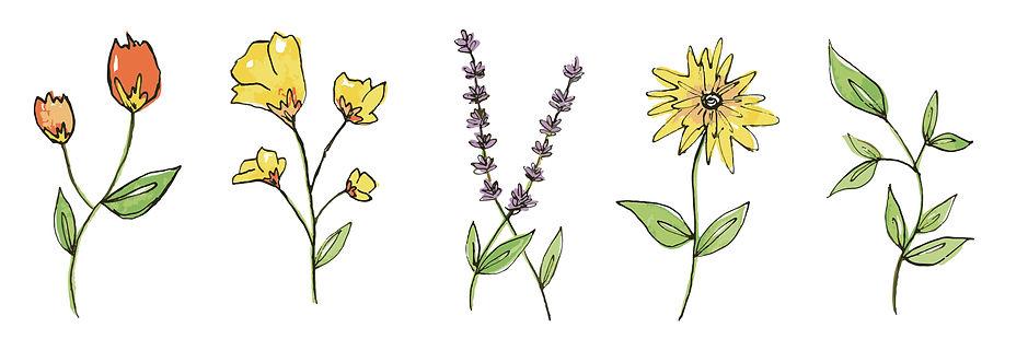 inkflower vector.jpg