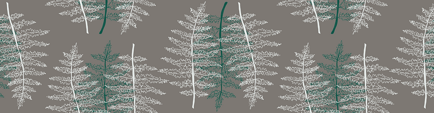 Patterns_fern.png