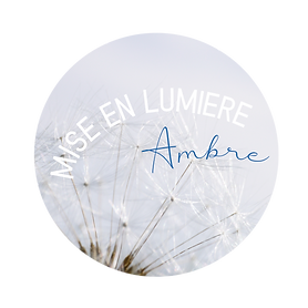 logo-misenlumiere-avril-2019.png