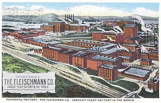 1917 postcard image fleischmanns plant.J