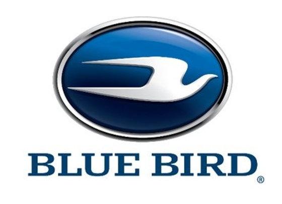 Blue Bird Vinyl Seat Paint