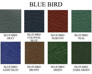 blue-bird-colors.jpg