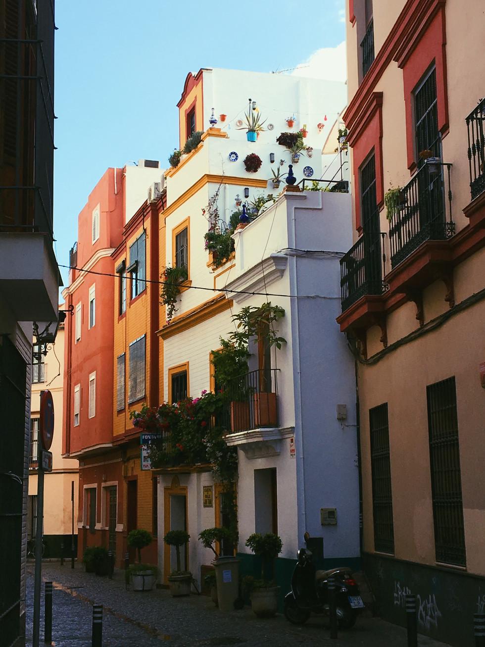 Andalusia: Cartajima, Ronda & Sevilla