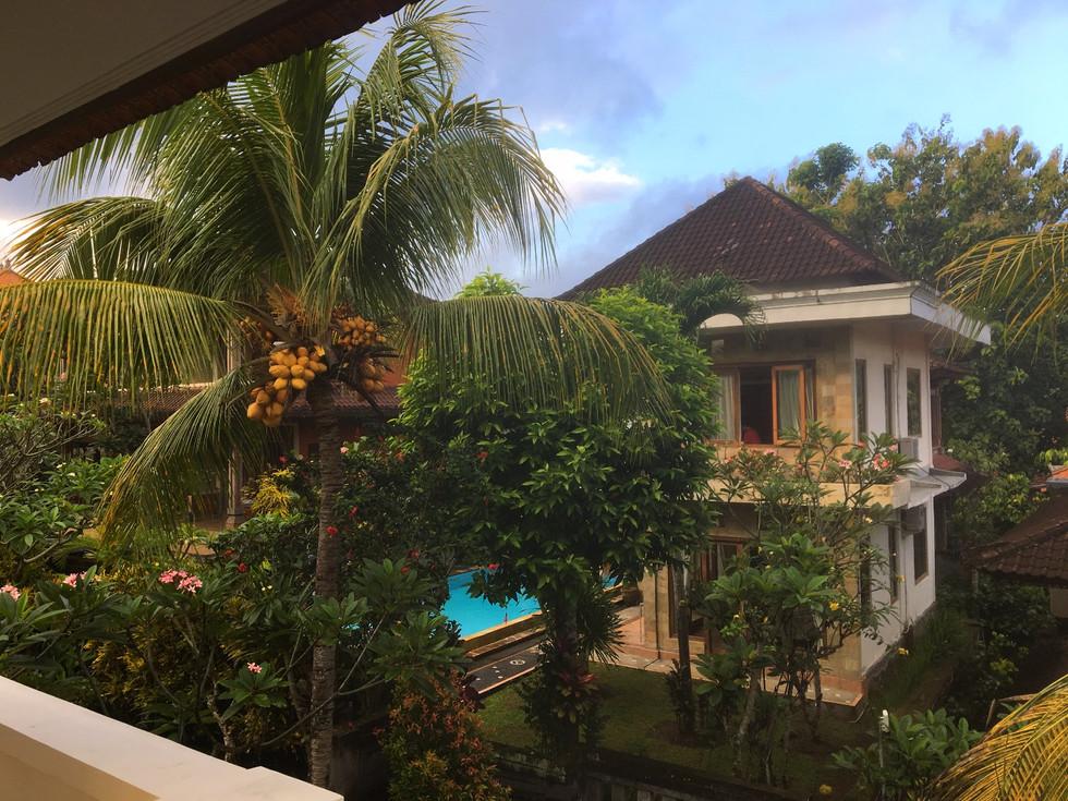 Bali, Indonesia: Part 1 (Ubud, Megwi, Bedugul, Jatiluwih Rice Terrace and Tanah Lot)