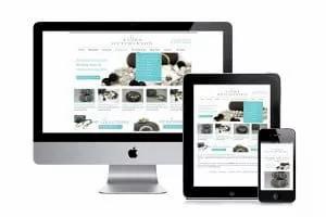 site-catalogue-wordpress-300x200.jpg.web