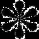 Hvezdicka-cerna180_edited.png