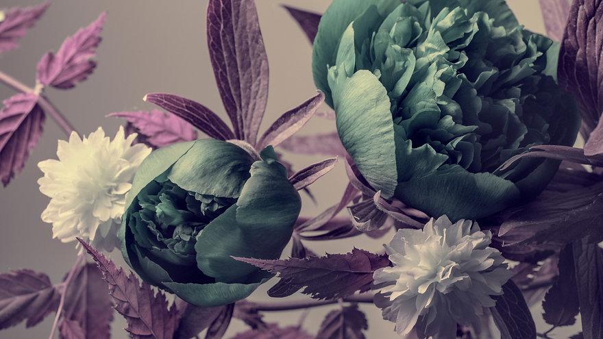 Floral%20Dark%20Pink_web_edited.jpg