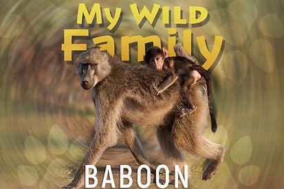 My wild family - baboon wide.jpg