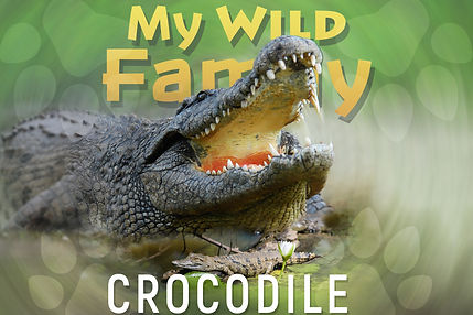 My wild family - crocodile-wide.jpg