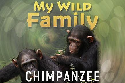My wild family - chimpanzee-wide.jpg