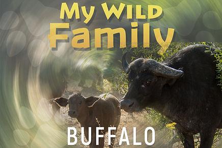 My wild family - buffalo-wide.jpg
