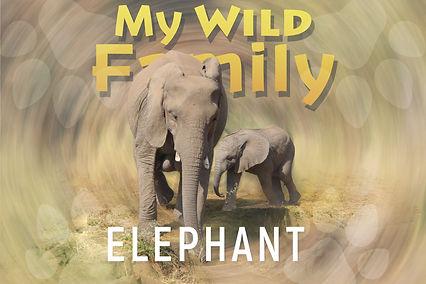 My wild family - Elephant-wide.jpg