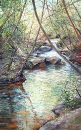 Johns Creek I