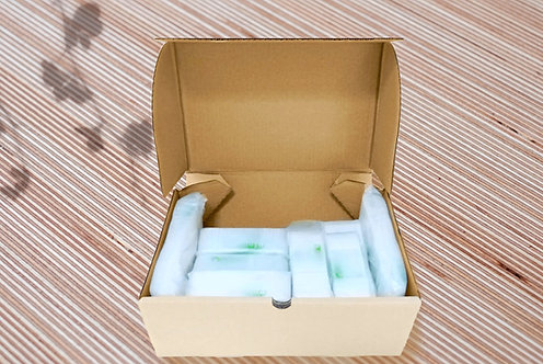 Starter box Biodegradable ziplock Mix size