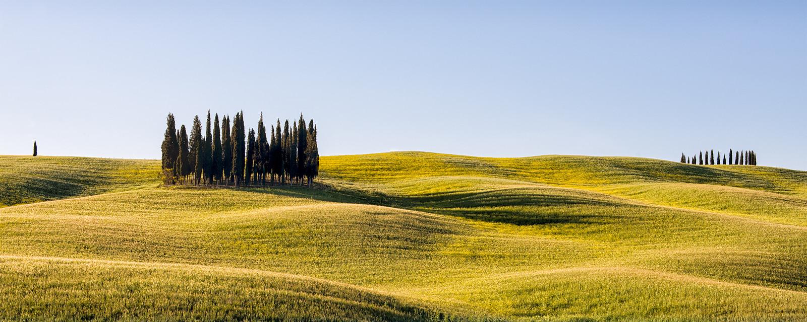 PDI - A Tuscan Landscape by Pauline O'Flaherty (9 marks)