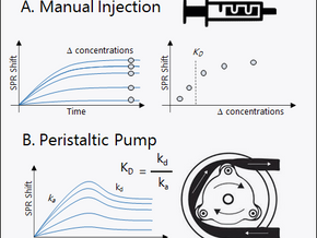 Manual Injection vs Pump-Assisted SPR Experiment