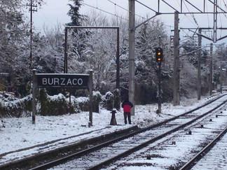 El día que nevó en Buenos Aires