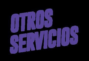 site 2019 SERVICIOS-08.png